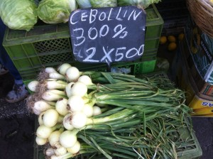 These green onions were huge.  Cebolla is onion, cebollin is little onions. (I think)